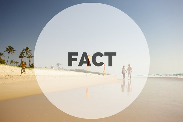 reflective fact
