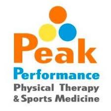 Peak Performance Logo stacked